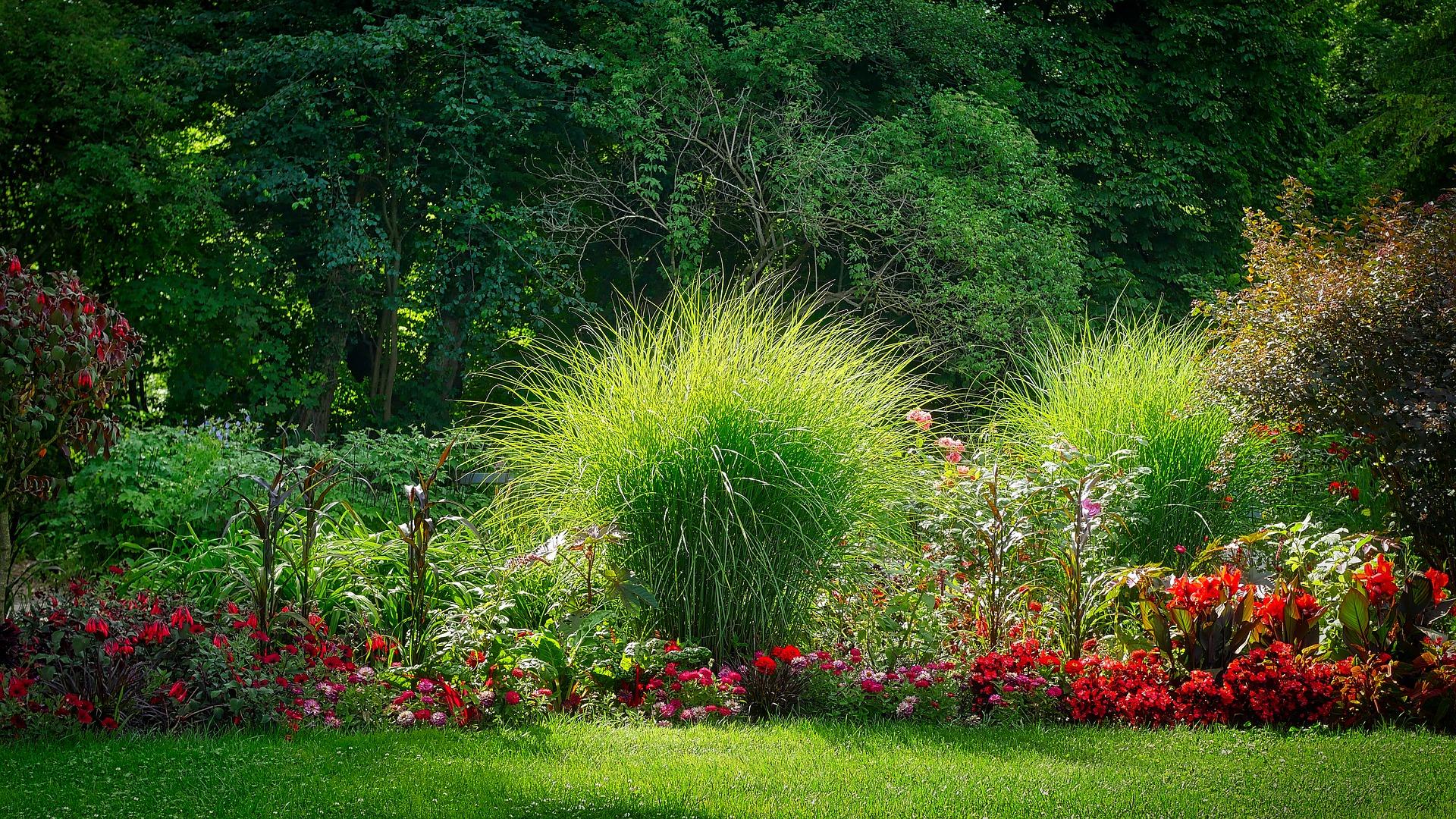 Jak se postarat o zahradu po zimě?